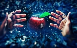Abstract fruits hands mechanical digital art artwork apples wallpaper