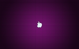 Apple inc purple plain wallpaper
