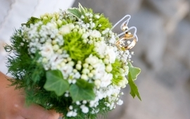 Flowers depth of field bouquet wallpaper