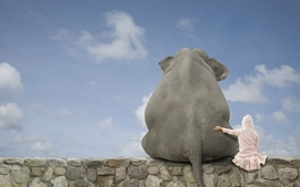 Funny stones artwork elephants skyscapes funny animals wallpaper