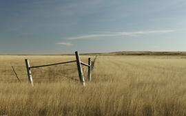 Landscapes nature fences grass wallpaper