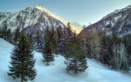 Mountains landscapes snow trees wallpaper
