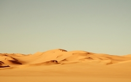 Nature desert sand dunes wallpaper