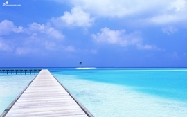 Water blue ocean sand trees dock skyscapes wallpaper