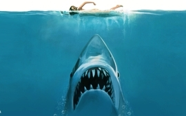 Water concept funny sharks swimming jaws wallpaper